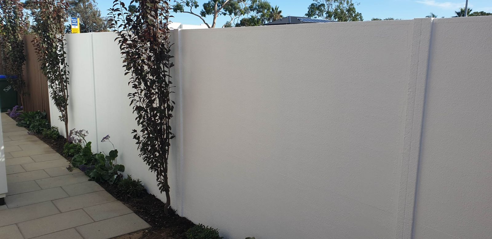 Wall-images